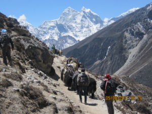 pure-and-pretty-everest-base-camp-trekking